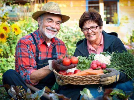 Как жить отдельно от родителей-пенсионеров