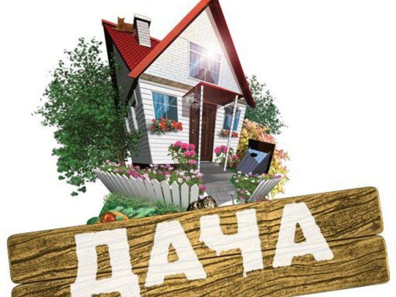 Льготные налоговые ставки не распространяются на дачные и садовые участки, используемые в предпринимательской деятельности