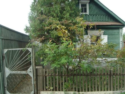 Продам дом площадью 60 кв. м. в Оренбурге