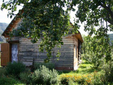 Продам дом площадью 48 кв. м. в Горно-Алтайске
