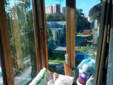 Продам двухкомнатную квартиру на 5-м этаже 5-этажного дома площадью 46 кв. м. в Новосибирске