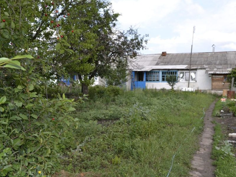 фотографии поселок комсомольский рамонского района клуба понравились требования
