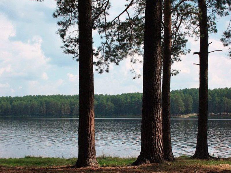 самусь озеро фото чего ушли