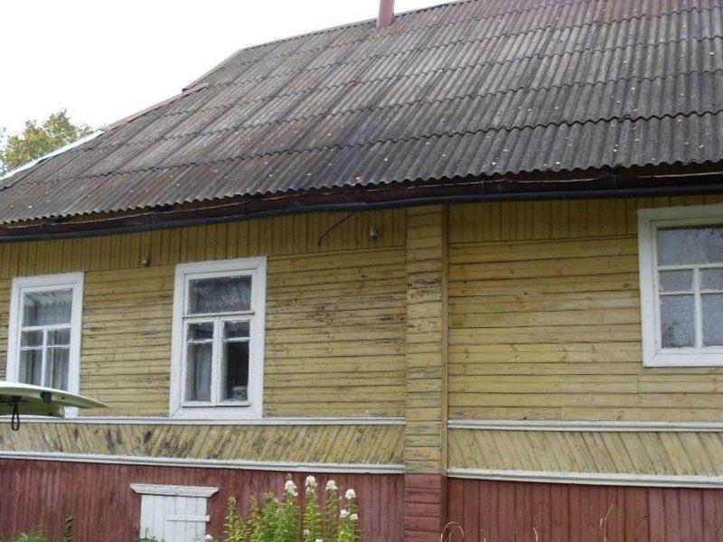 заполье псковская область показать фото