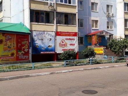 Сдам помещение свободного назначения площадью 23 кв. м. в Оренбурге